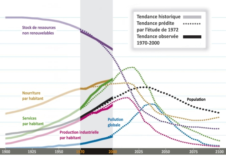 meadows-graphique-tendances